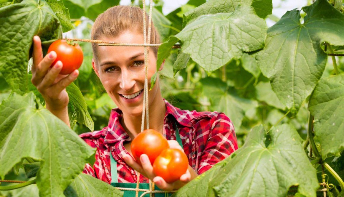 gardeningveggies